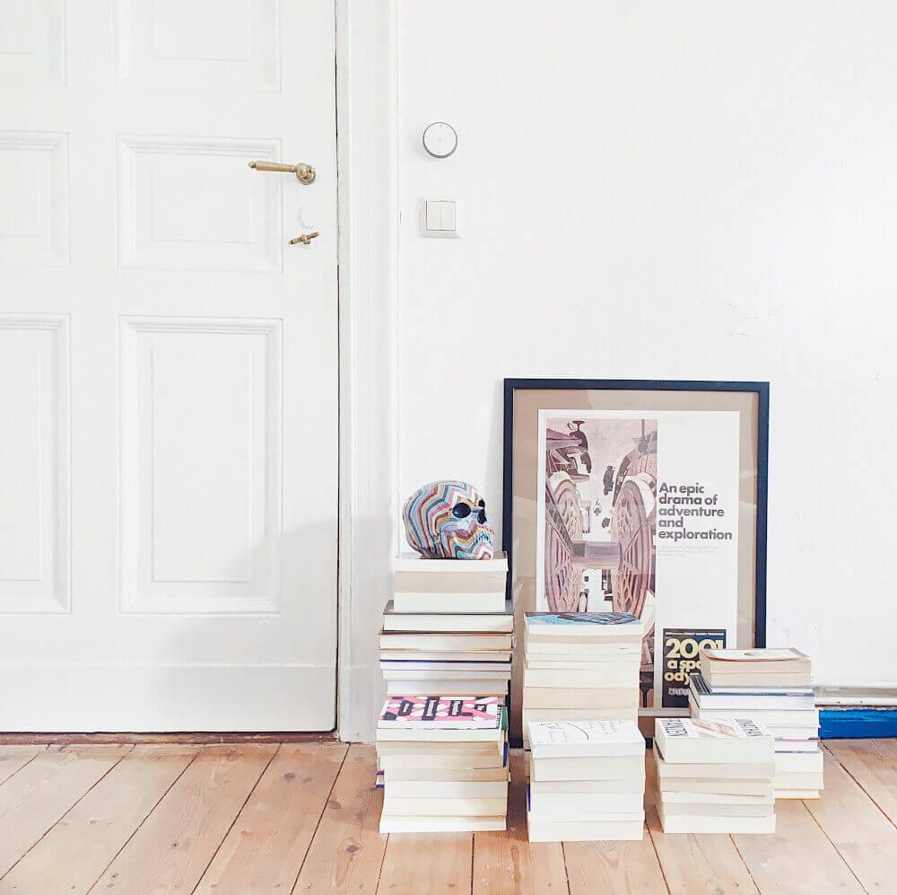 Картина врата и книги
